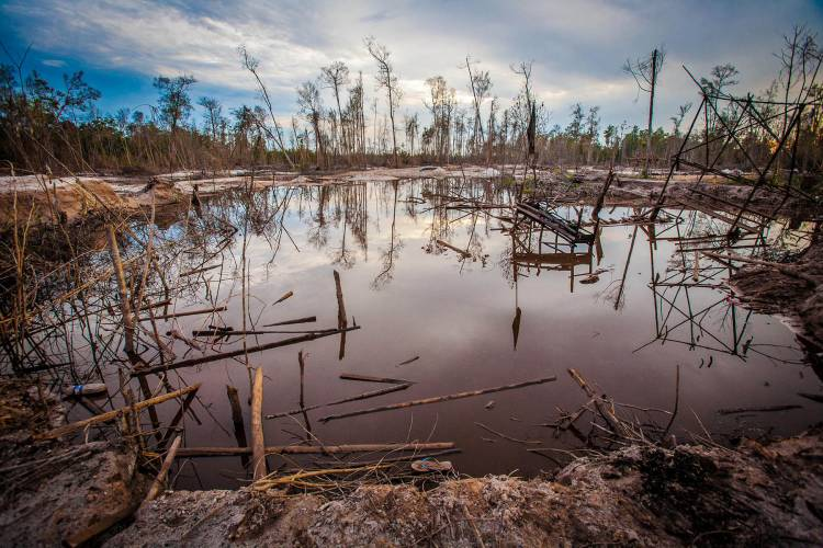Extraction and deforestation: It takes two to tango